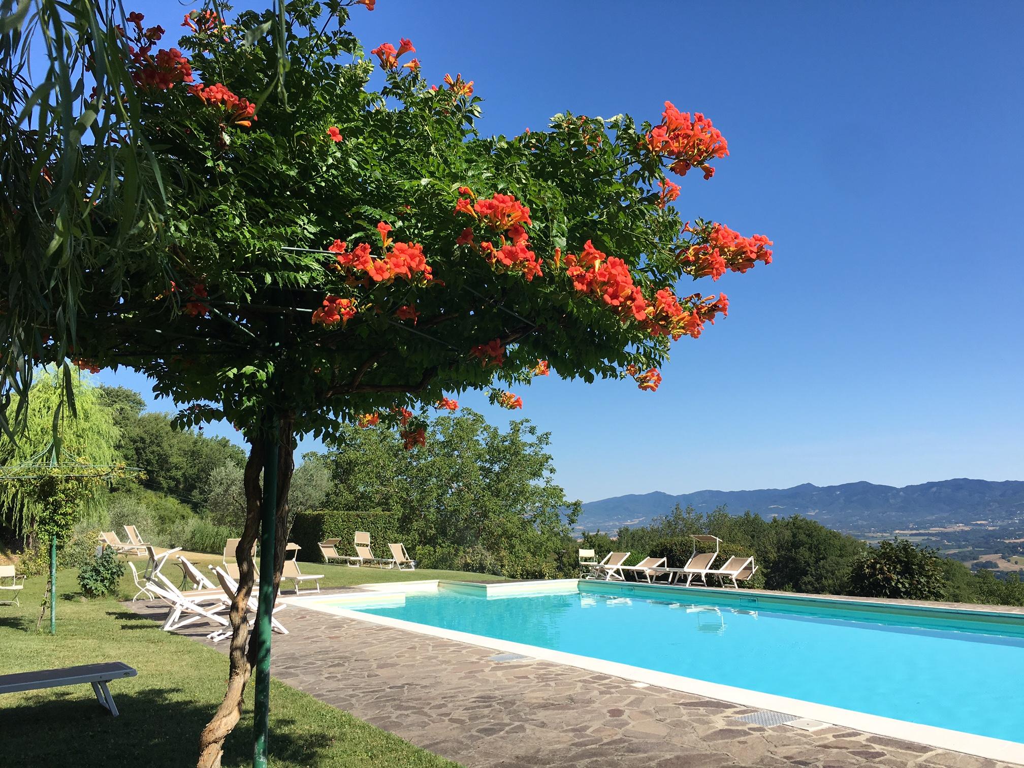 Resort per Famiglie in Toscana a Villa Campestri Olive Oil Resort