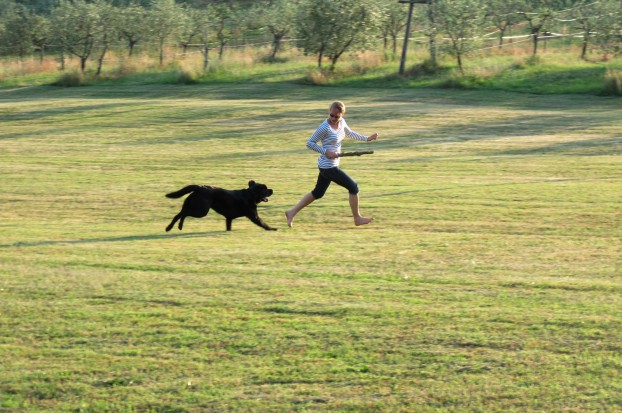 The resort for dogs and hosts of Villa Campestri Olive Oil Resort