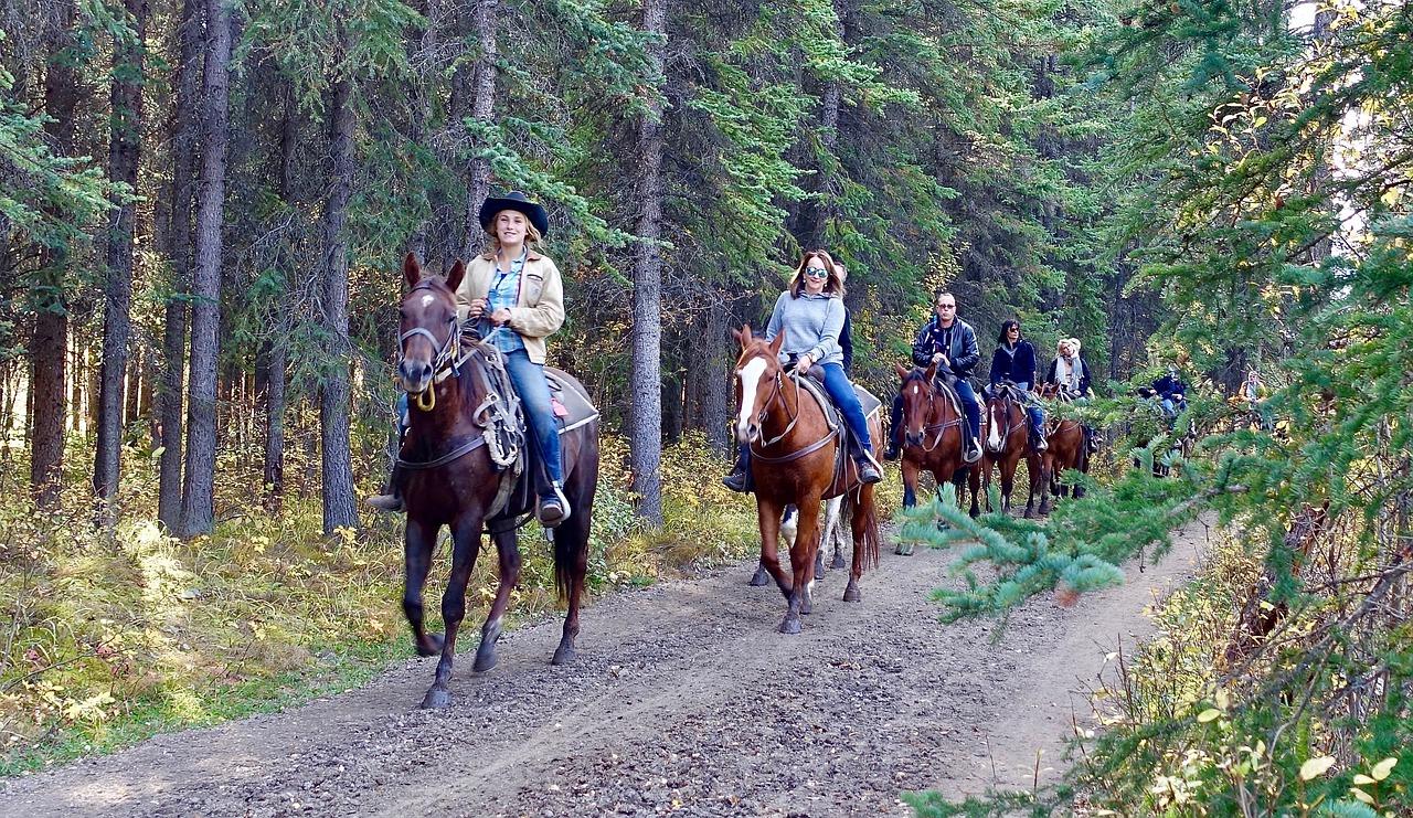 Le vacanze a cavallo in Toscana con Villa Campestri Olive Oil Resort