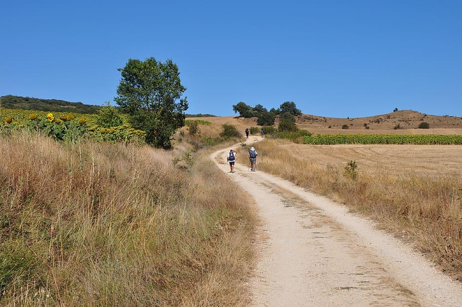 Excursions in the Mugello
