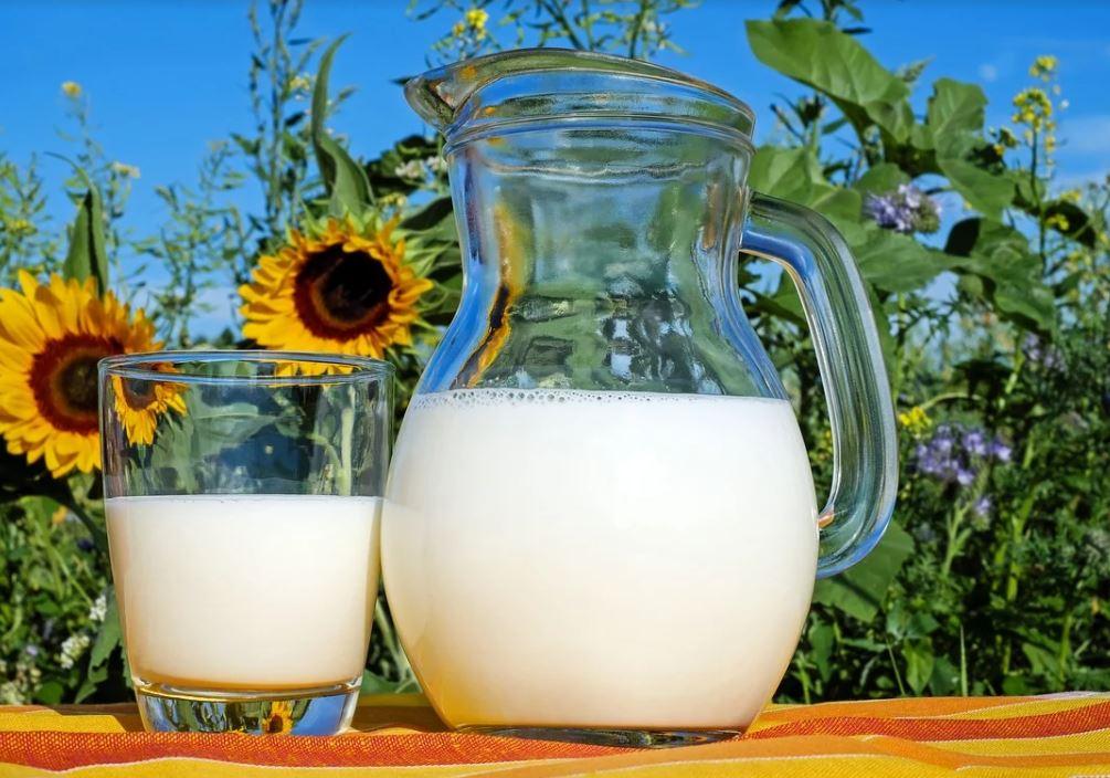 il latte di qualità della via del latte nel mugello