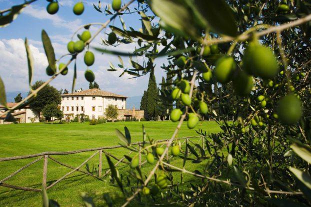 Resort per bambini e famiglie in Toscana di Villa Campestri Olive Oil Resort